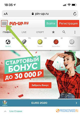 Кнопка меню на сайте Pin-Up